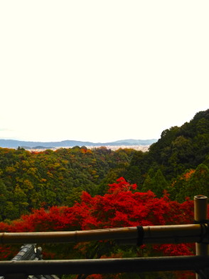 2014-11-16-15-06-01_photo